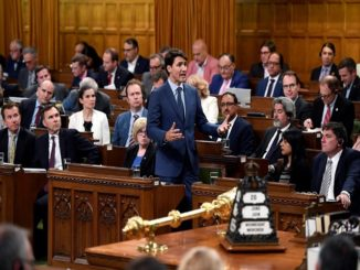 PM declares: Recreational marijuana to become legal from October 17