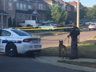 Man found dead in shooting at Brampton home