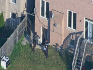 Peel Police are appealing for witnesses in 13th Homicide of 2018