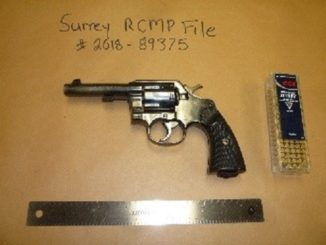 Surrey RCMP arrest nine people; seize drugs, cash, handgun