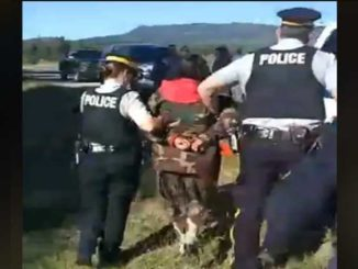 RCMP arrest Indigenous pipeline protester at provincial park near Kamloops, B.C.