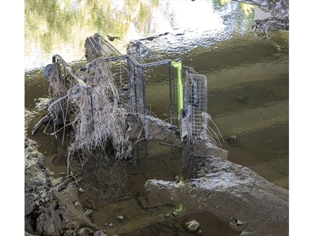 Brampton resident expresses concern about abandoned shopping carts found in the area