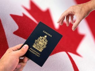 Canada's immigration system continues to innovate and deliver better service