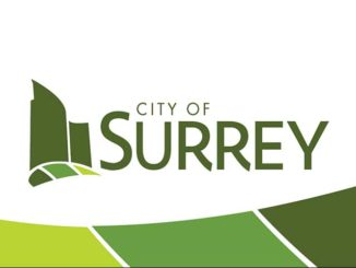 Surrey announces winners of inaugural Social Innovation Awards