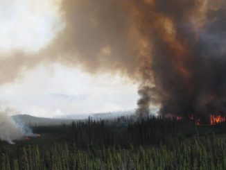 B.C. declares provincial state of emergency due to wildfires