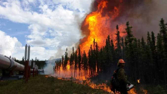 Waterloo researcher says climate change will drive up insurance premiums