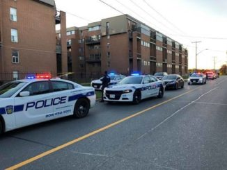Mississauga : Police says act of violence will not be tolerated
