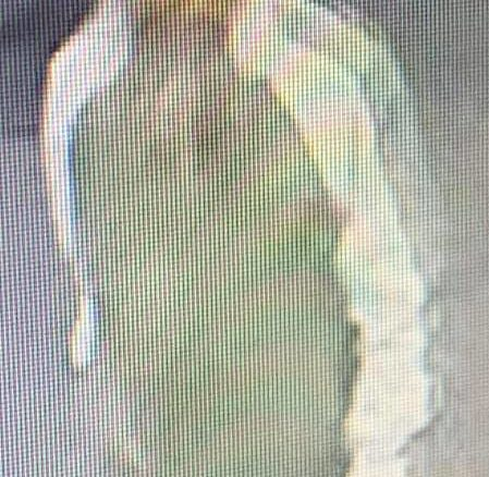 Surrey RCMP is looking for 50-60 year-old South Asian male