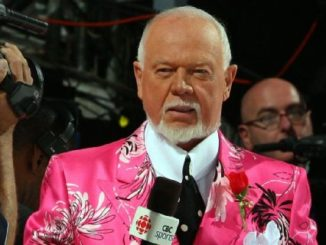 Hockey Night in Canada analyst Don Cherry fired for anti-immigrant comments
