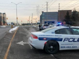 1 injured, 1 arrested in possible case of road rage in Brampton