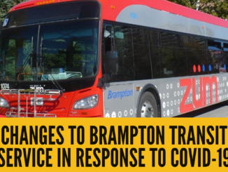 Changes to Brampton Transit service in response to COVID-19