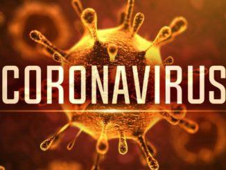 World Health Organization declares COVID-19 a pandemic