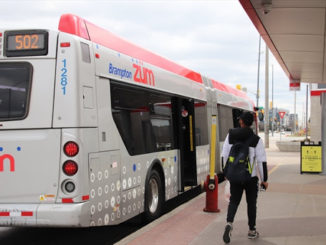 Brampton Transit driver tests positive for COVID-19
