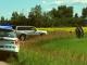 Canola thieves invade farms near Calgary, police issue tickets