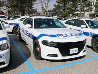 Region of Peel : Multiple charges laid in car theft crime spree