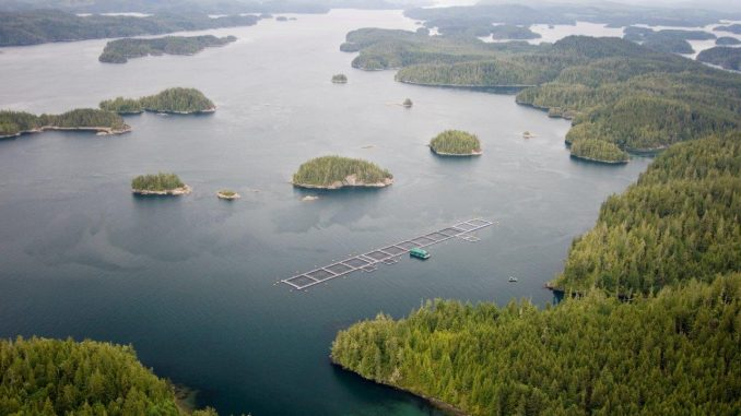 Government of Canada Launches Public Engagement on First-Ever Aquaculture Act