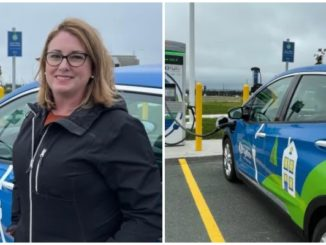 electric car owners